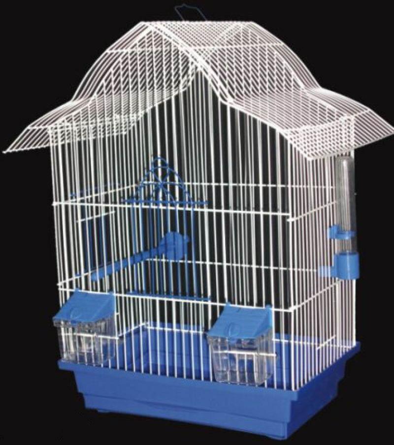Купить попугая лори в москве - b